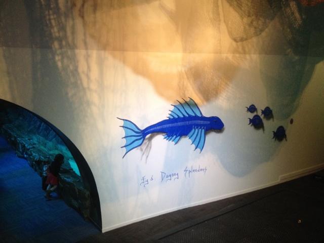 aquarium-paris-coeur-de-corail.3