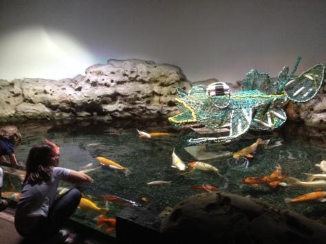 aquarium-paris-coeur-de-corail.5